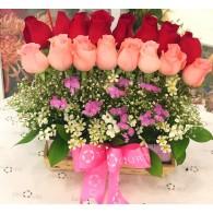 短玫瑰枱花