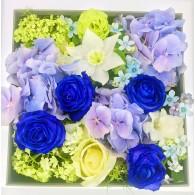 藍雪玫瑰禮盒