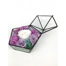 玻璃盒的神秘園