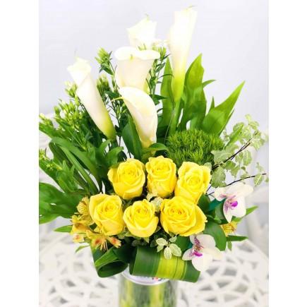 馬提蘭玫瑰枱花