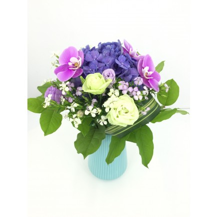 蝴蝶蘭繡球枱花